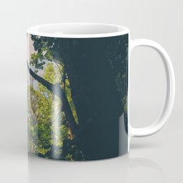 A frame within a frame Coffee Mug