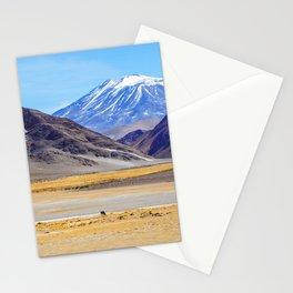 Paz Andina Stationery Cards