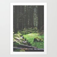 Streams - Nydoa Photography Art Print