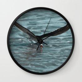 Hungry Black Skimmer Ocean Bird Wall Clock