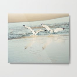 Seagull Beach Photography, Shore Birds Art, Pale Blue Ocean Bird Print, Coastal Photo Metal Print