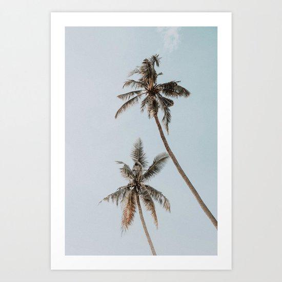 two palm trees by mauikauai