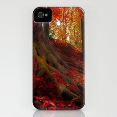 Autumn light iPhone (4, 4s) Slim Case