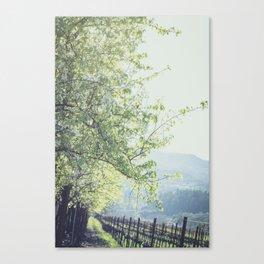 Flowers in the Vineyard Canvas Print