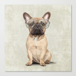 Mr French Bulldog Canvas Print