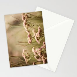 Garden view Stationery Cards