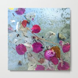 Pink-Magenta Flower Petals Floating In Pond Metal Print