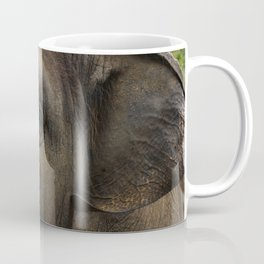 Elephant closeup Coffee Mug