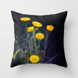 Meadow of the Sun Throw Pillow