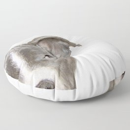 Pit bull with white background Floor Pillow