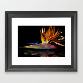 Out of the Depths... Framed Art Print