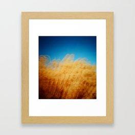 Wheat Waiver Framed Art Print