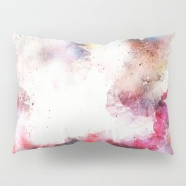 Paint Pillow Sham
