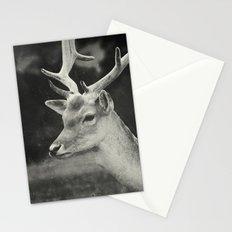 Still Stationery Cards
