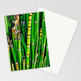 Green York Street Garden Stationery Cards