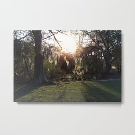 A Gleaming Afternoon In New Orleans City Park Metal Print