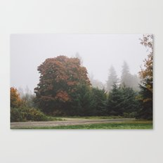 Northwestern Fog Canvas Print