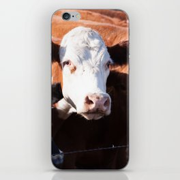 Moo II iPhone Skin