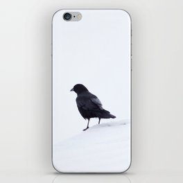 Crow in Snow iPhone Skin