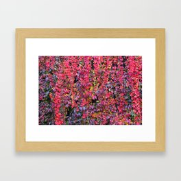 colorful leaves Framed Art Print
