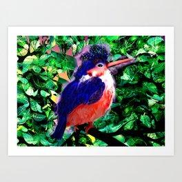 a blue bird Art Print