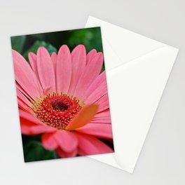 Poignant Memoir Stationery Cards