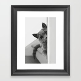Diesel on Tour ! Framed Art Print