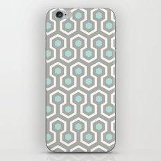 Icicle iPhone & iPod Skin