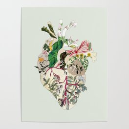 Vintage Botanical Heart On Green Poster