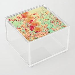 Happy Spring Crossing Acrylic Box