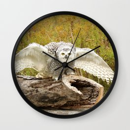 Laying down the law Wall Clock