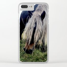 Horse in Westfjords Clear iPhone Case
