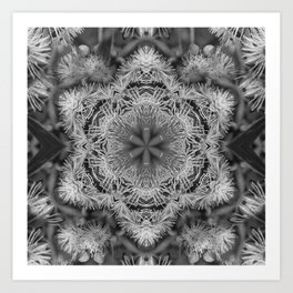 Magical black and white mandala 011 Art Print
