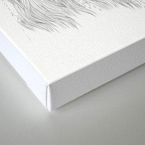 Bob II Canvas Print