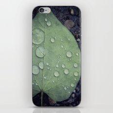 Leave iPhone & iPod Skin