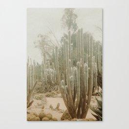 Fade Desert Canvas Print