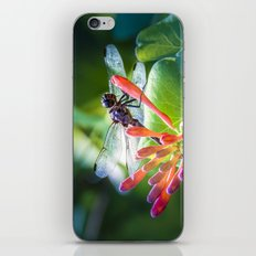 Dragonfly iPhone & iPod Skin