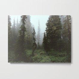 Rainier Forest Metal Print