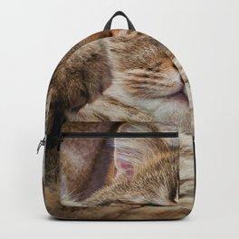 Cute Kitty Backpack