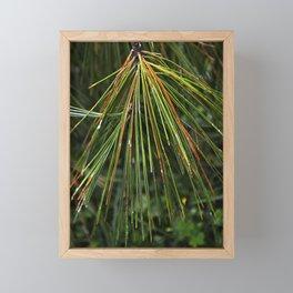 Multicolor Pine Needles Framed Mini Art Print