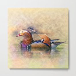 Watercolor Mandarin Ducks Feng Shui Symbol Metal Print