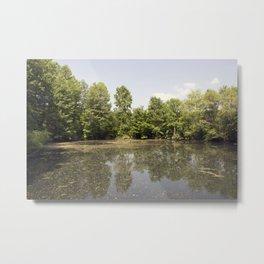 Longwood Gardens - Spring Series 220 Metal Print