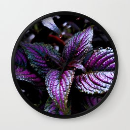 Persian Shield Wall Clock
