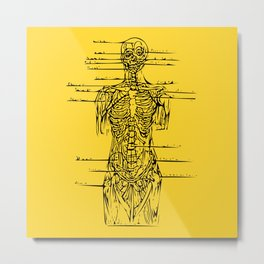 Anatomy Lesson Metal Print