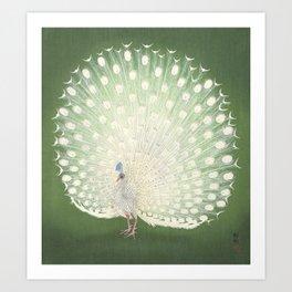 Peacock, Ohara Koson - Japanese Woodcut Art Print