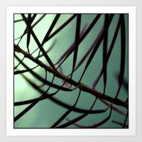 plant. Art Print