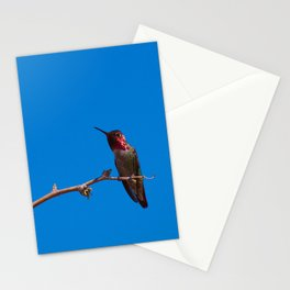 Beautiful Hummer - II Stationery Cards