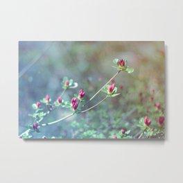 Flowers in the window 03 Metal Print