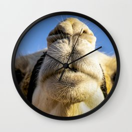 Blue Camel Wall Clock