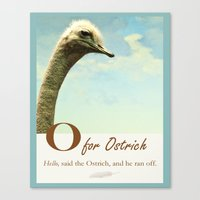 ostrich Canvas Prints featuring  Ostrich by ZenzPhotography